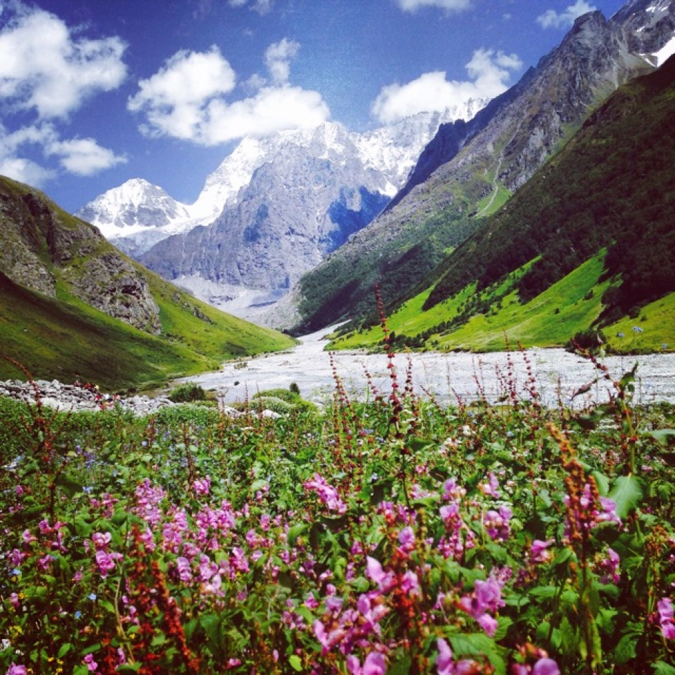 The Valley of Flowers trek